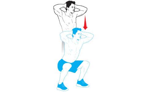 Bodyweight Squat Diagram Block And Schematic Diagrams